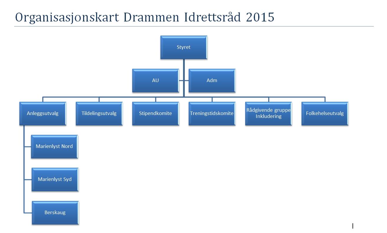 Orgkart_DIR_2015
